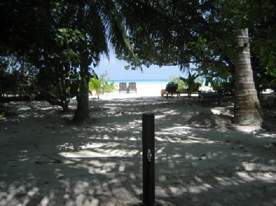 Holiday Island Resort & Spa: the view from the front of our bungalow