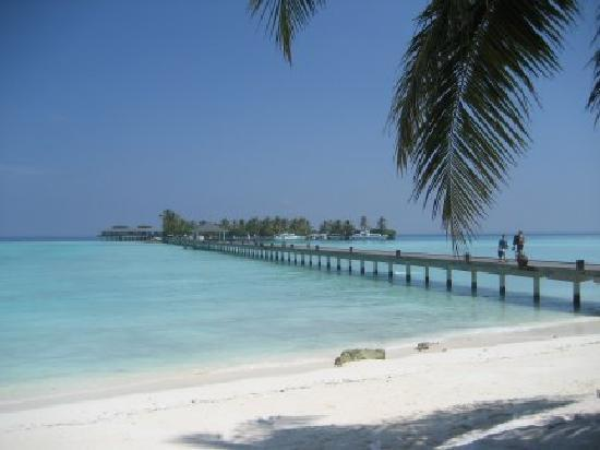 Holiday Island Resort & Spa: The jetty