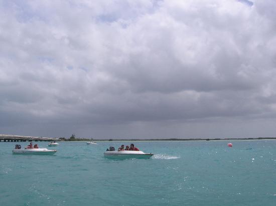 Iberostar Mojito: Speed Boat Tour