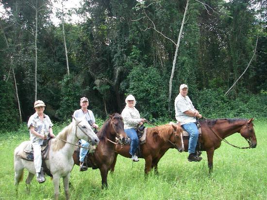 Belize Jungle Dome: Horseback ride through the jungle at adjacent Banana Bank Resort