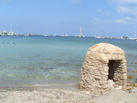 Alua Hawaii Ibiza: plage de l'hotel