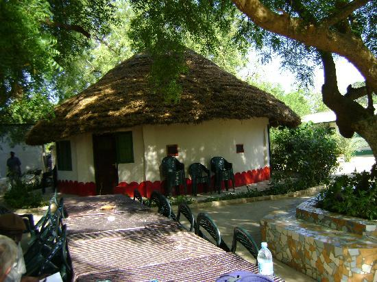 Baobolong Camp: relax under the neem trees