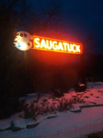 Saugatuck Entrance onto Lake St.