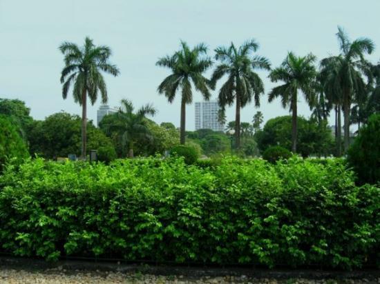 Calcutta, India: Victoria Memorial area