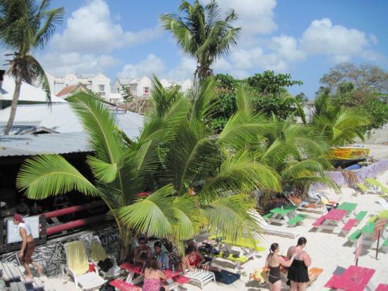 Bilde fra The Boatyard
