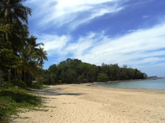 Takua Pa, Thailand: you have the jungle directly behind the beach - GREAT!
