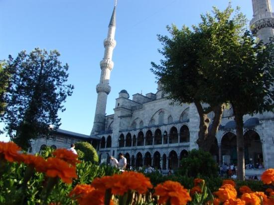 Den blå moské: Blue Msque (Sultan Ahmet) - August 06