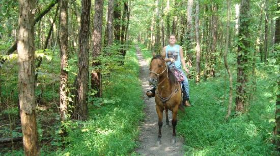 Shawnee National Forest: Shawnee