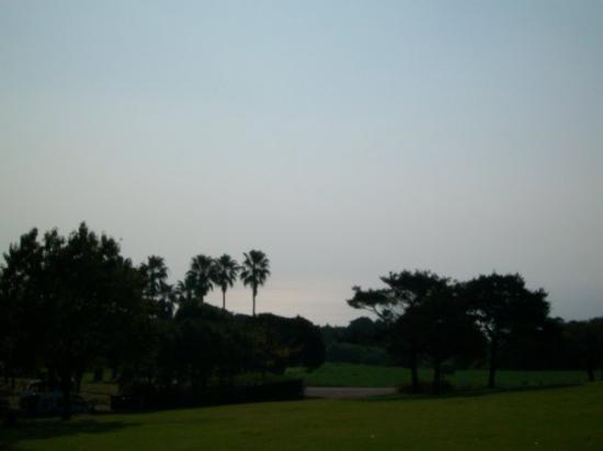 Bilde fra Kagoshima