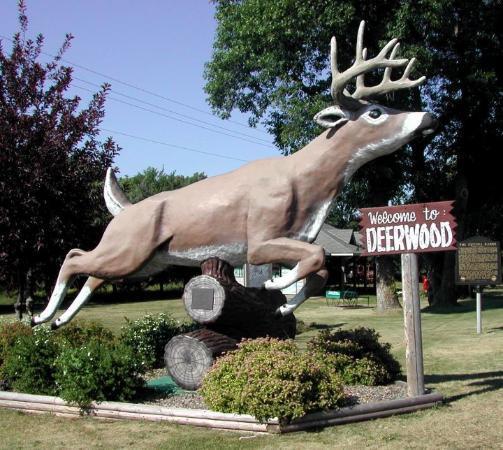 Deerwood BIG Buck