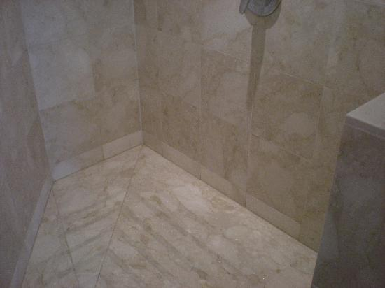 Sofitel Chicago Magnificent Mile: shower