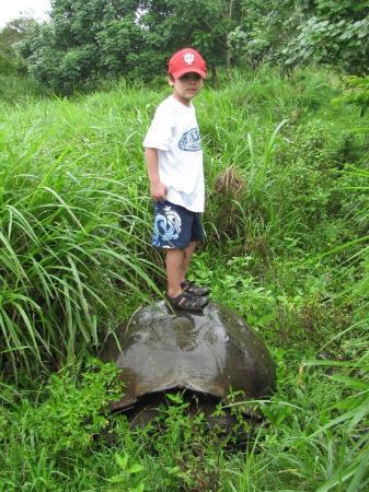 Puerto Ayora, Ecuador: no... i didnt tell him to do this