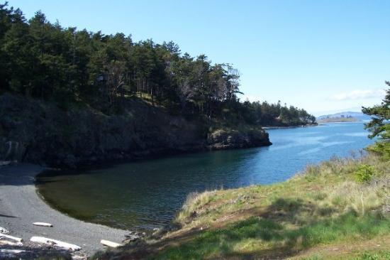 Bilde fra Friday Harbor