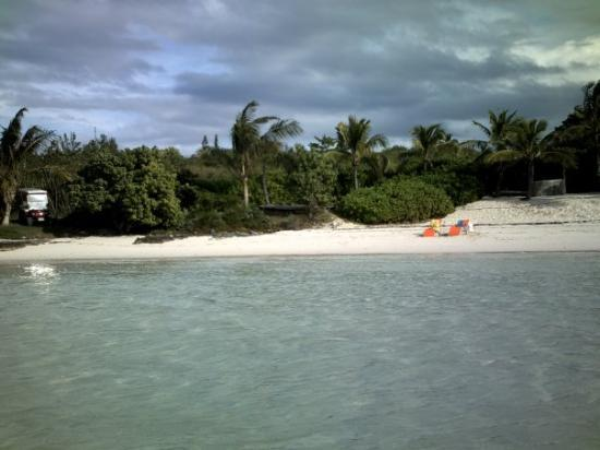 Harbour Island: found a private beach after wamping on our golf cart thru the junge
