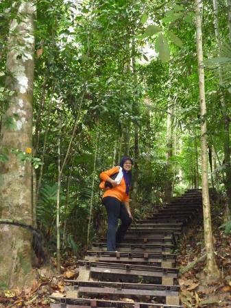 Bilde fra Kuala Tahan
