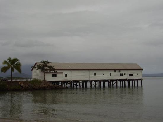 Port Douglas post cyclone