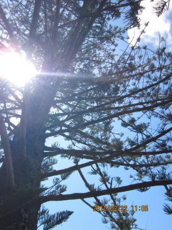 Bilde fra Byron Bay