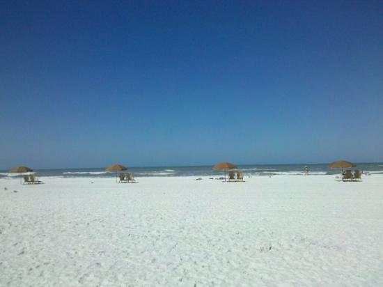Bilde fra Clearwater