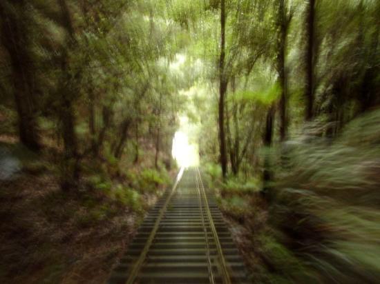 Blue Mountains National Park, Australia: Blue Mountains railway