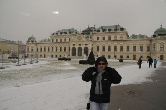 Belvedere Palace Museum: Cold Belverdere  at -5 C