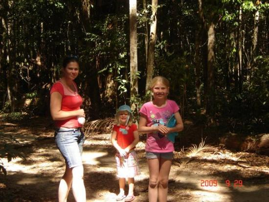 Coolum Beach, Australia: bush walking