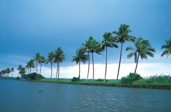 Alappuzha, Indien: kuttanad - the land that is under the sea level.