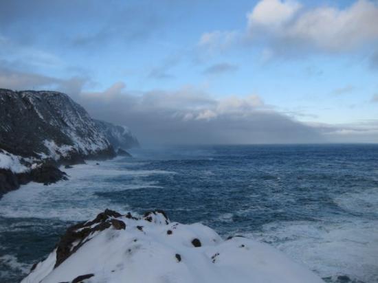St. John's, Canada: Newfoundland coast