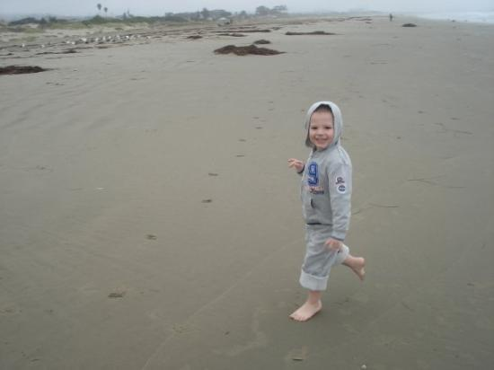 Morro Bay, CA: Hunter running around.