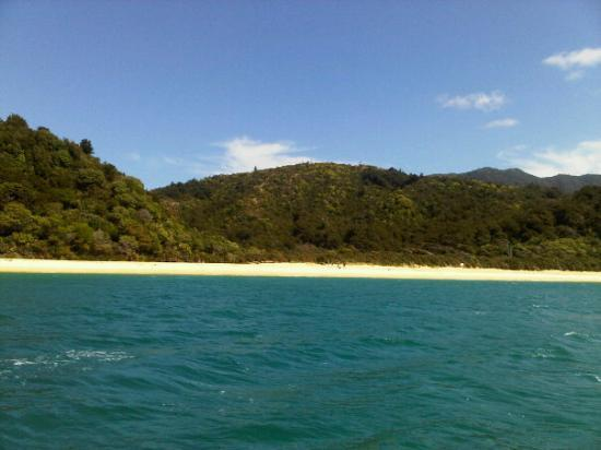 Abel Tasman National Park, New Zealand: Abel Tasman beach