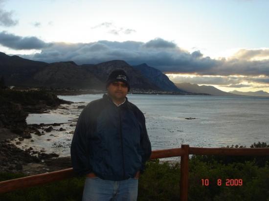 Hermanus Whale Cruises: Hermanus, near Cape Town, South Africa
