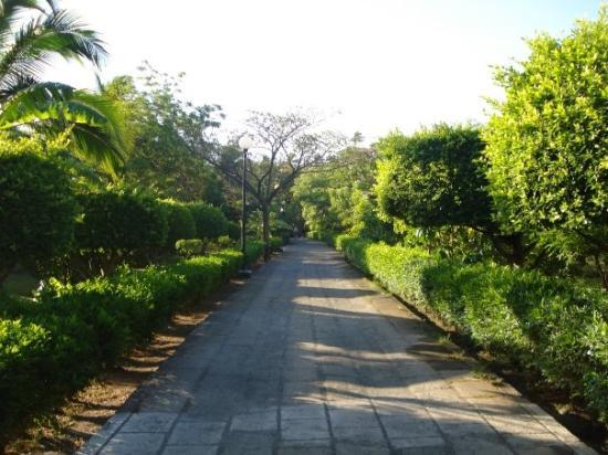 Barcelo Montelimar: Another road...