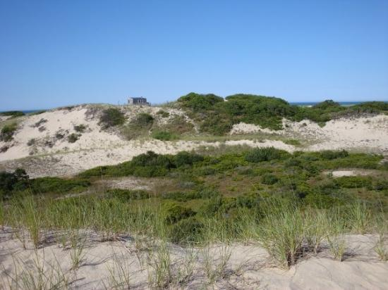Race Point Dunes in Provincetown.