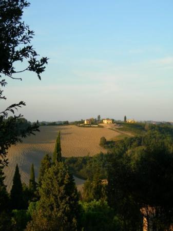Castelfiorentino, Italia: Tuscan hills from Castello di Oliveto