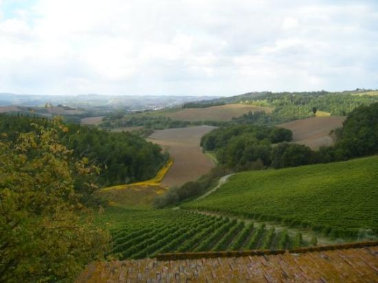 The view of Tuscan hills from our apartment outside Castelfiorentino