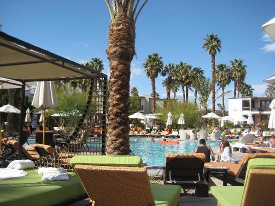 Riviera Palm Springs Resort: Pool area
