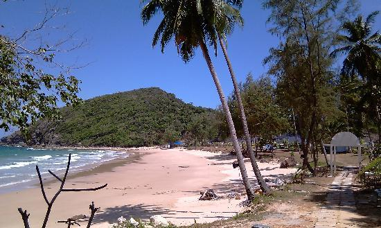 Sari Pacifica Hotel, Resort & Spa Sibu Island: Beach and future dive site end of beach