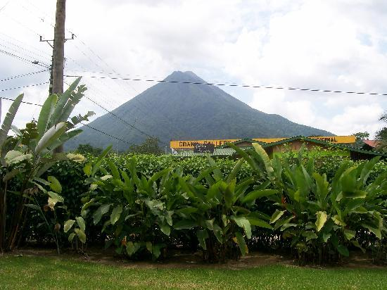 Hotel Vista del Cerro: View of Arenal Volcano from our room - all rooms have same view.