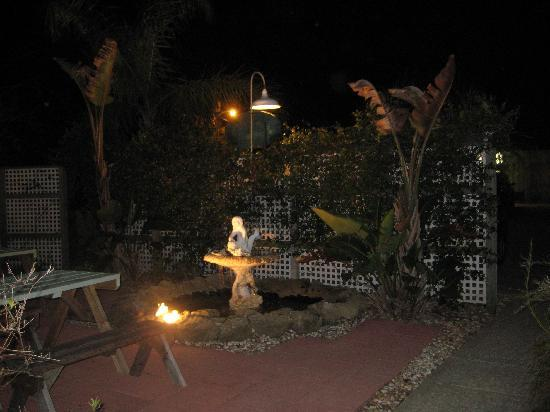 Buena Vista Inn: The garden at night