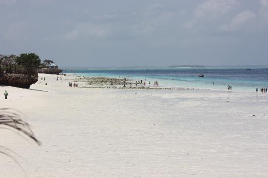 The Z Hotel Zanzibar: Beautiful white beaches