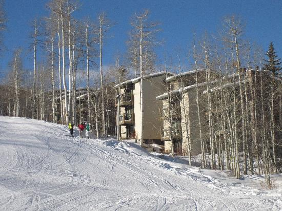 The Timberline Condominiums : Ski in-ski out at Timberline