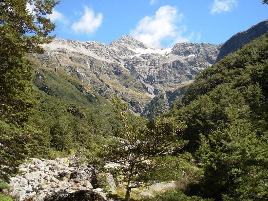 Arthur's Pass Hiking & Tranz Alpine One Day Tour: Views near the end of the trail