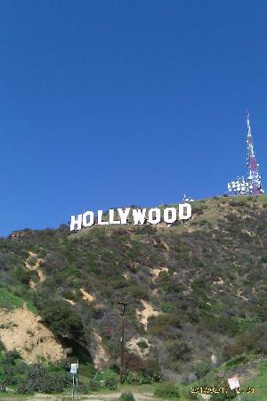 Hollywood Orchid Suites: hollywood sign