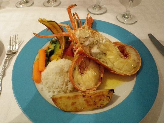 TRYP Cayo Coco: Lobster at the International restaurant