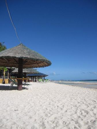 Marlin's Beach Resort: Beach area