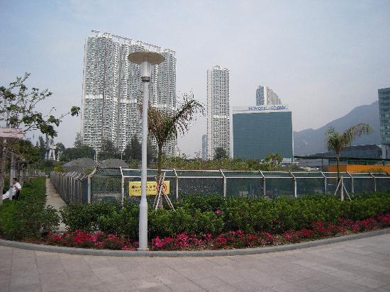 Novotel Citygate Hong Kong: Novotel Citygate - Tung Chung