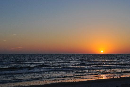 Doubletree Beach Resort by Hilton Tampa Bay / North Redington Beach: Sunset From The Beach