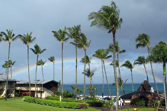 Napili Shores Maui by Outrigger: View from our room with one of many raindows