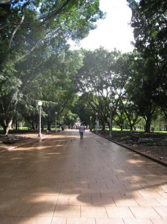 Bilde fra Hyde Park