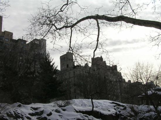 A wintry scene in Central Park