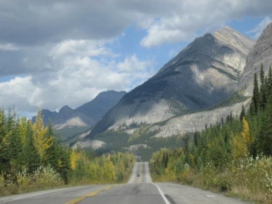 Bilde fra Banff National Park